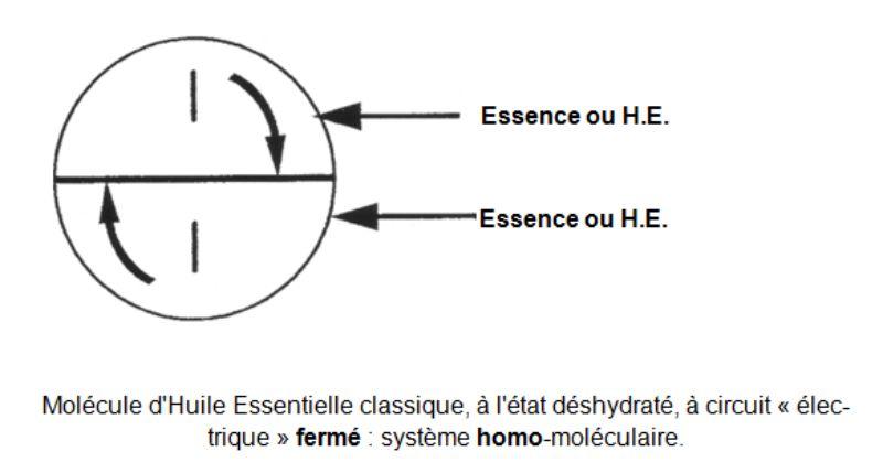 Molécule d'Huile Essentielle classique fermé
