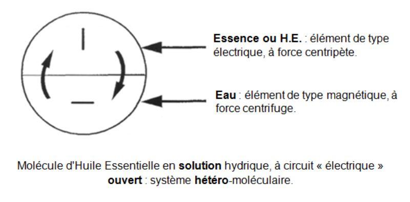Molécule d'Huile Essentielle en solution hydrique ouvert